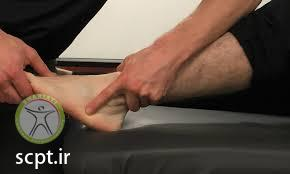 ankle assessment