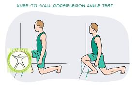 http://scpt.ir/uploads/ankle exercise knee to wall.png