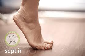 http://scpt.ir/uploads/ankle exercise.jfif