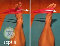 http://scpt.ir/uploads/ankle strengthening exercise elastic band 2.jfif