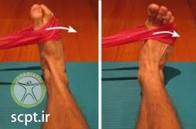 http://scpt.ir/uploads/ankle strengthening exercise elastic band 3.jfif