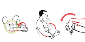 http://scpt.ir/uploads/elbow ROM exercise 2.png