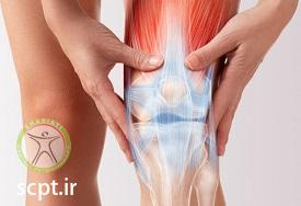 http://scpt.ir/uploads/knee-pain-1.jpg