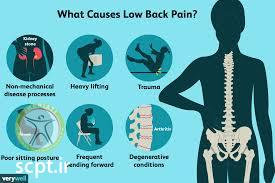 http://scpt.ir/uploads/low back pain causes 1.jpg