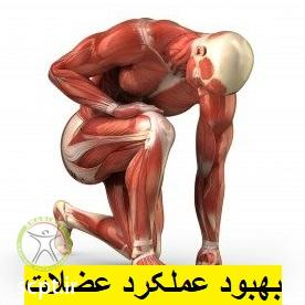 http://scpt.ir/uploads/massage-shariati-clinic-muscle-effect.jpg