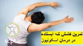 http://scpt.ir/uploads/scoliosis-exercise-4.jpg